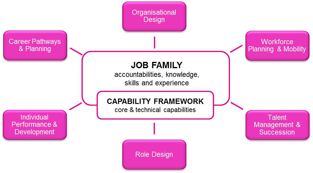 Job family model diagram